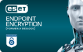 ESET Entdpoint Encryption (formerly DeSlock)